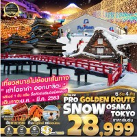 SNOW GOLDEN ROUTE OSAKA TOKYO (FREE DAY) 6D4N