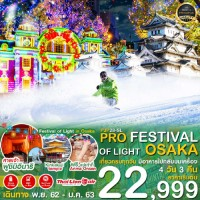 FESTIVAL OF LIGHT OSAKA 4D3N